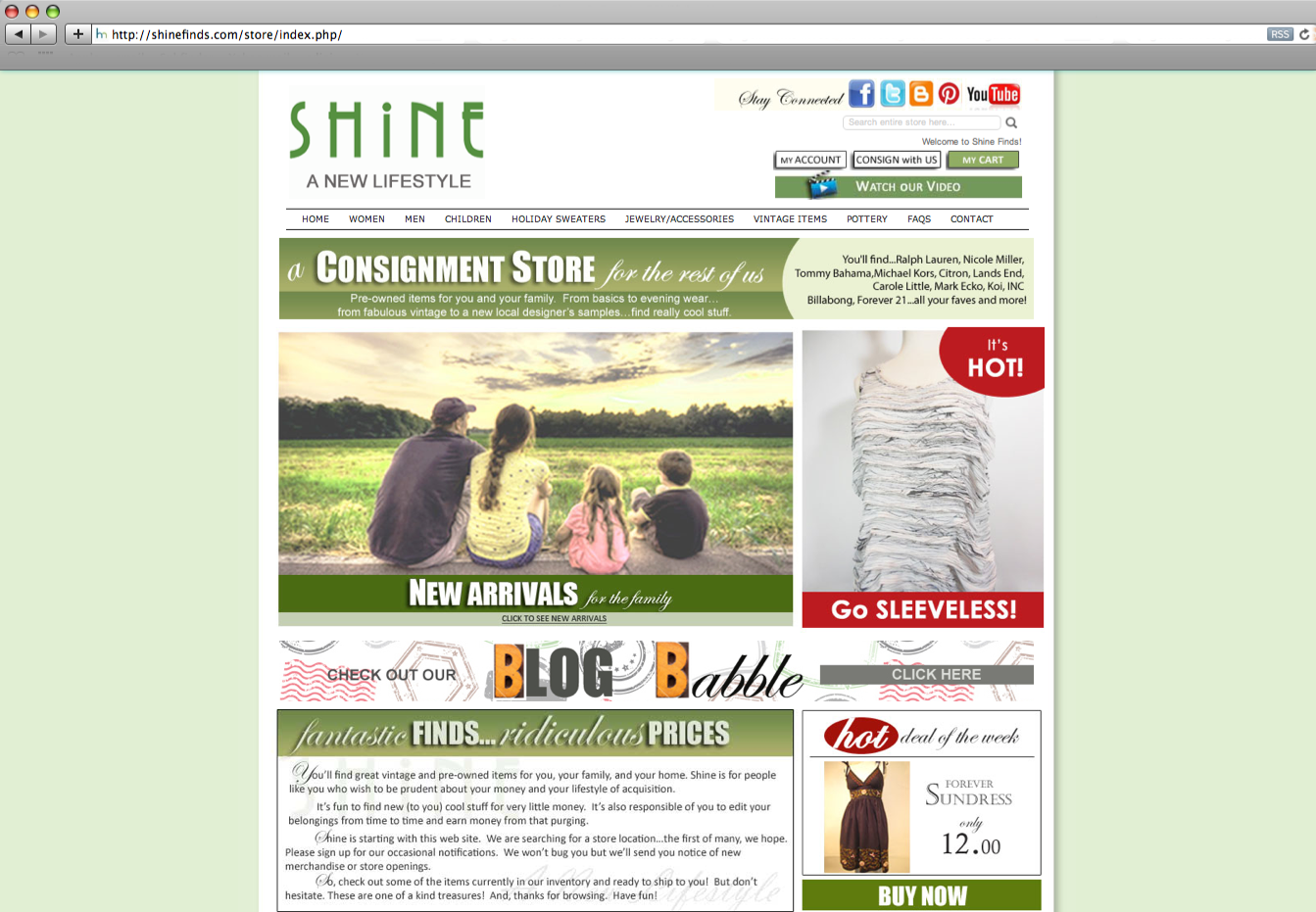 E-Commerce Solutions and Web Store Design - Shine